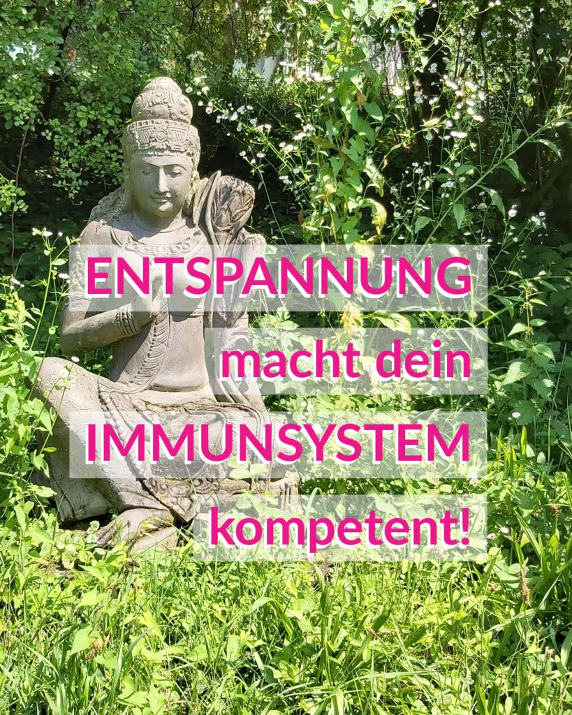 Immunsystem – Teil 5